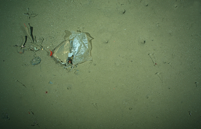 Photo of plastic waste, taken by the OFOS system in the HAUSGARTEN area in July 2012.