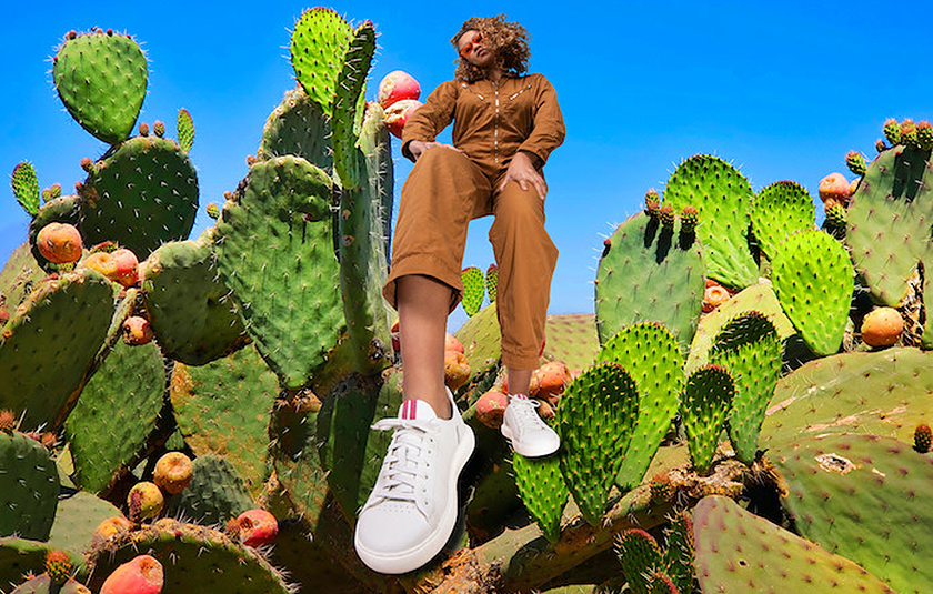 POZ - NEW Cactus Leather Sneakers