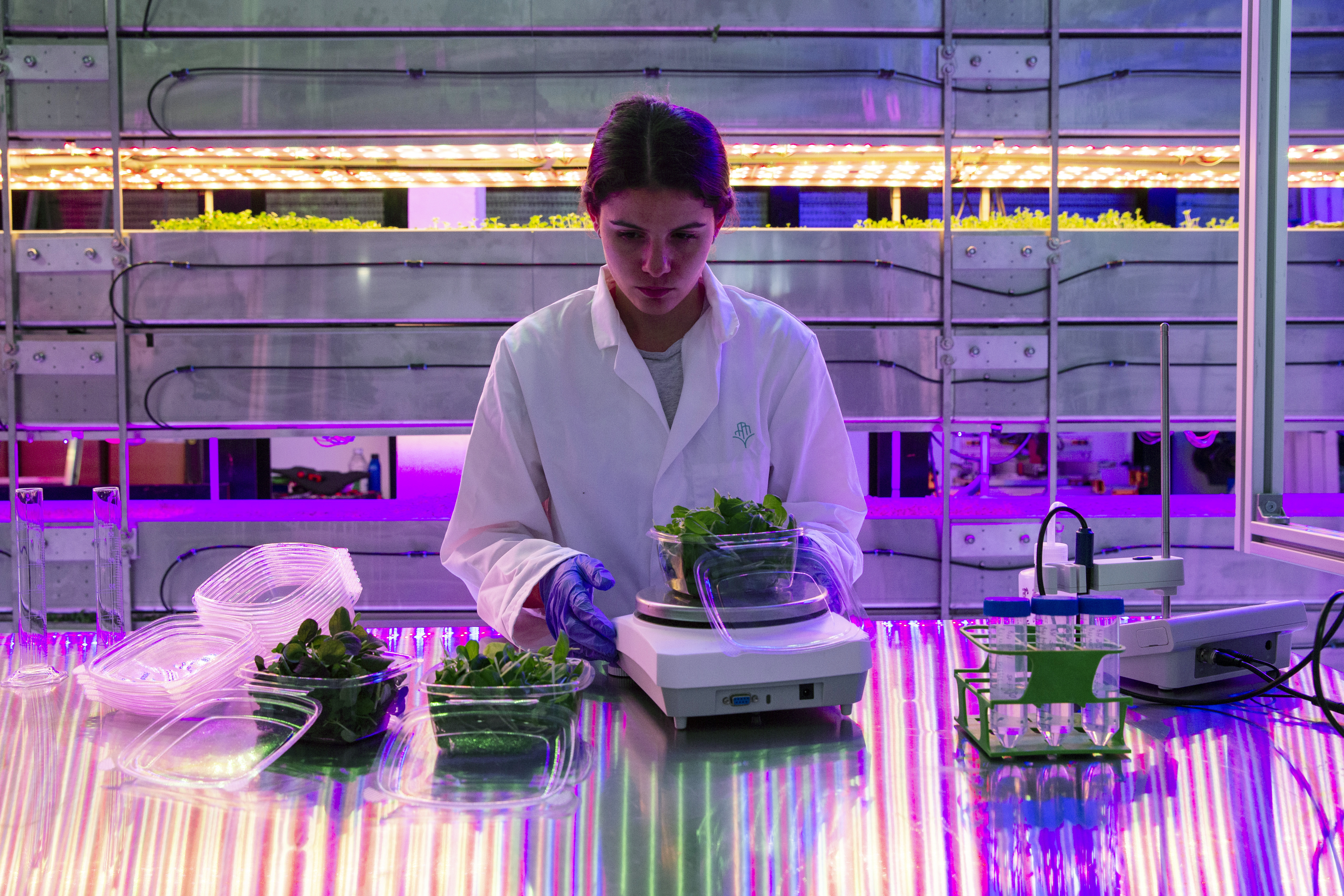 Launch of new vertical farm